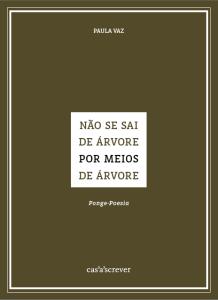 CapaPaulaVaz - site